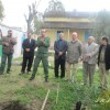 مجموعة مدارس  بني مالك تحتفل باليوم العالمي للشجرة