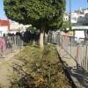 مغروسات ساحة الاستقلال ما بعد سهرة المنتدى الدولي الرابع للمدن العتيقة