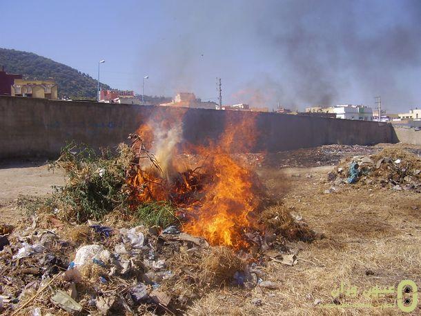 جانب من الأزبال والأعشاب أثناء الحرق