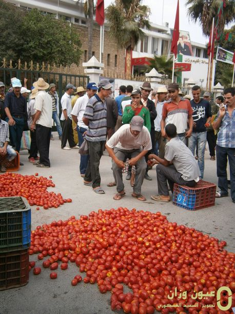 طماطم أمام مقر العمالة