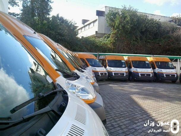 جانب من سيارات النقل المدرسي
