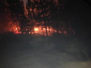 الحريق بغابة إيزارن