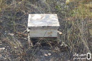 صندوق نحل متضرر من الحريق