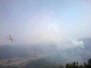 إحدى الطائرات وهي تحاول إخماد الحريق بغابة عين ابقار بجماعة ابريكشة