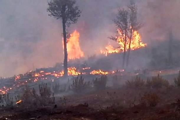جانب من حريق غابة باب تازوارت.