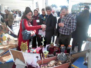 إبداعات فنية وأدبية ومعارض بيئية عناوين لفعاليات الأنشطة المواكبة والمستمرة ل ِCOP22 بالمديرية الإقليمية لوزارة التربية الوطنية لوزان