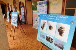جمعية مغرب أصدقاء البيئة تشارك قافلة العلوم لوزان حفل افتتاح معرض حول التربية على التغيرات المناخية
